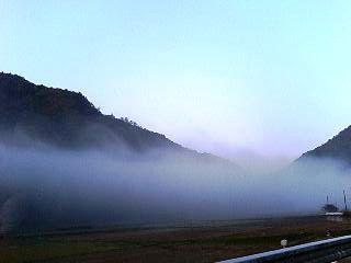 11月の霧